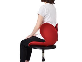 Body Make Seat Style (ボディメイクシート スタイル)